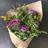 Brassica morada