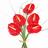 Ramo Anthurium Rojo