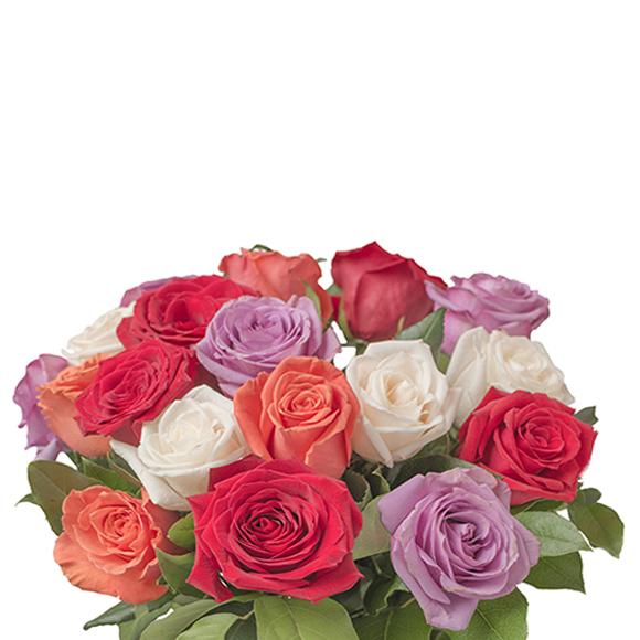 Ramo de Rosas - Regalar flores en madrid - floresfrescas.com