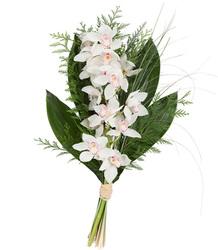 Gran Ramo Orquídea