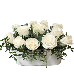 Jardin de Rosas Blancas