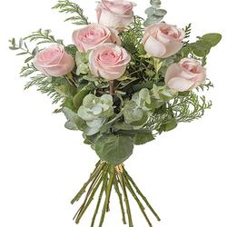 Rosas Esperanza
