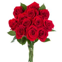 12 Rosas Tallo Corto