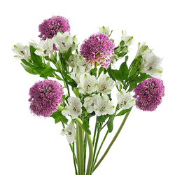 Alliums y Alstroemerias