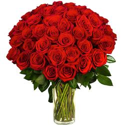 Ramo de 45 Rosas Rojas
