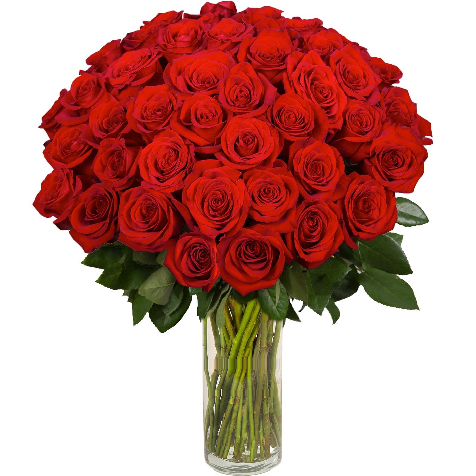 enviar 42 rosas rojas enviar rosas a domicilio floresfrescascom - Imagenes De Ramos De Flores