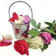 Petalos de Rosas en Cubo de Cristal
