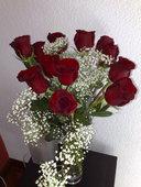 Rosa roja ramificada